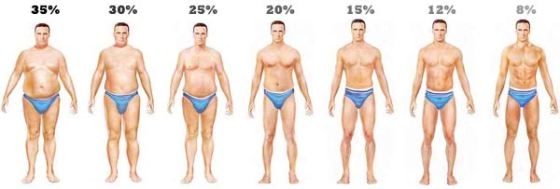 Calculate Your Body Fat Percentage